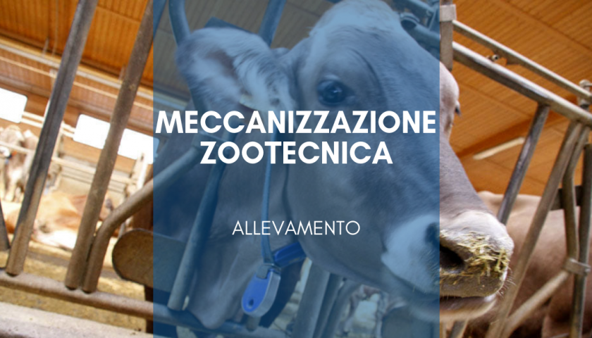 zootecnica